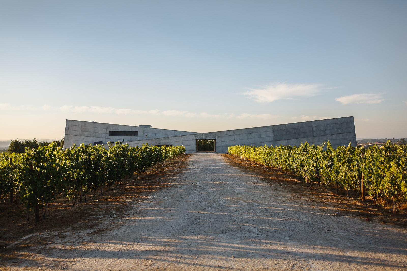 Caminhos Cruzados - Visita & Prova de 3 Vinhos