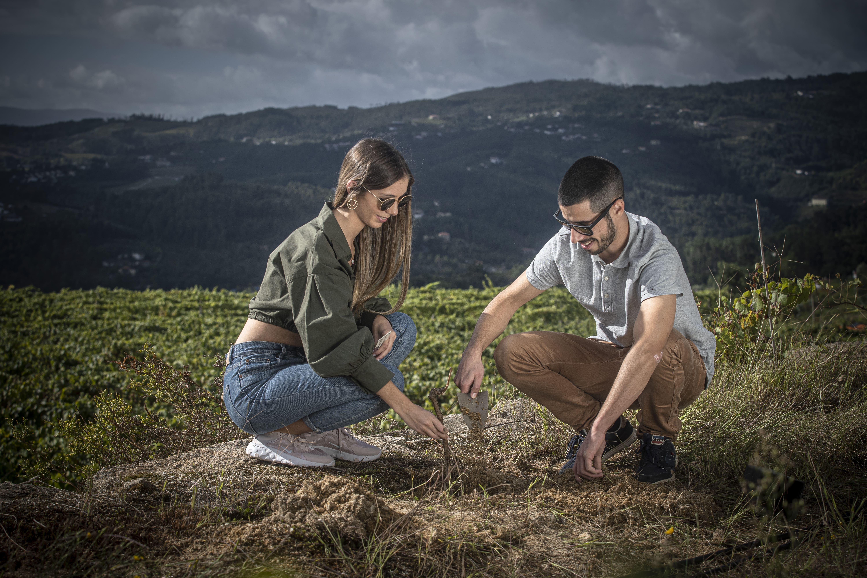 Quinta de Santa Cristina - Wine & Vine Planting