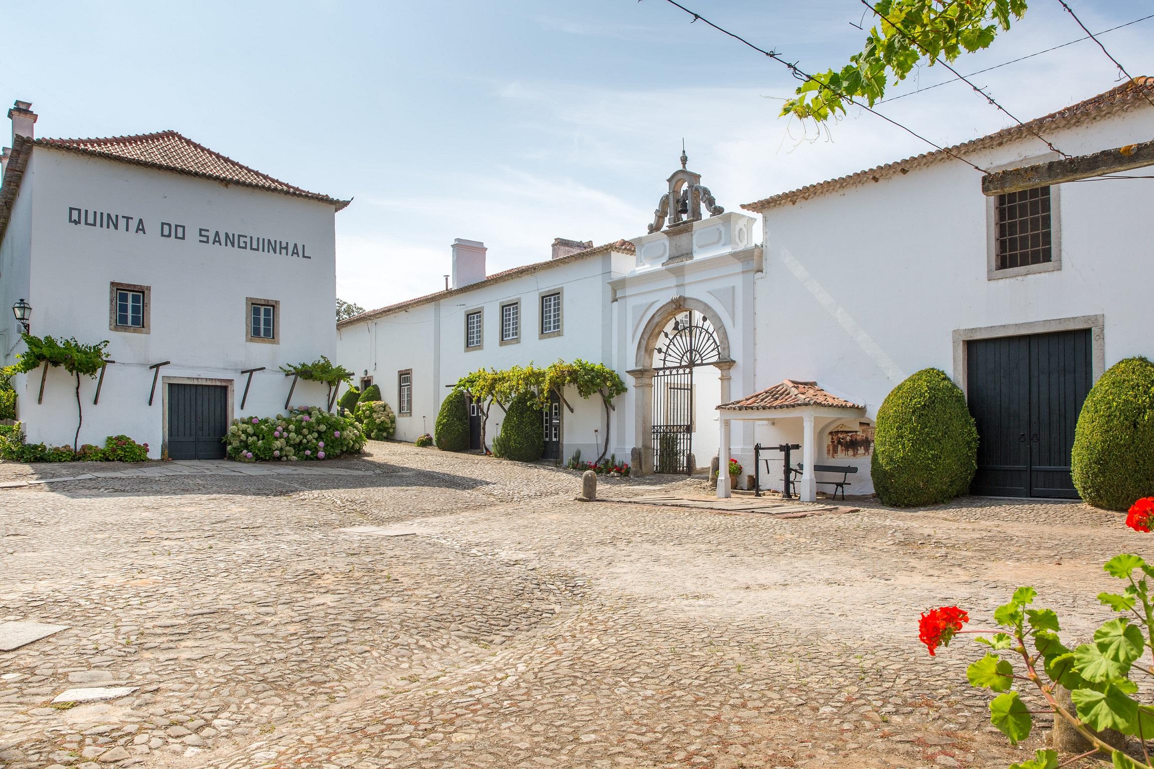 Quinta do Sanguinhal - Visita & Prova de Vinhos