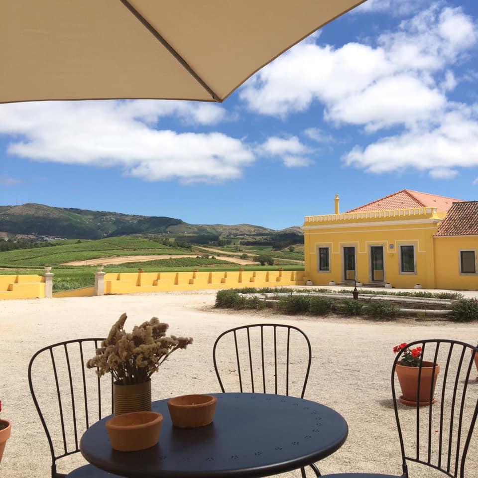 Quinta do Gradil - Menu Vínico