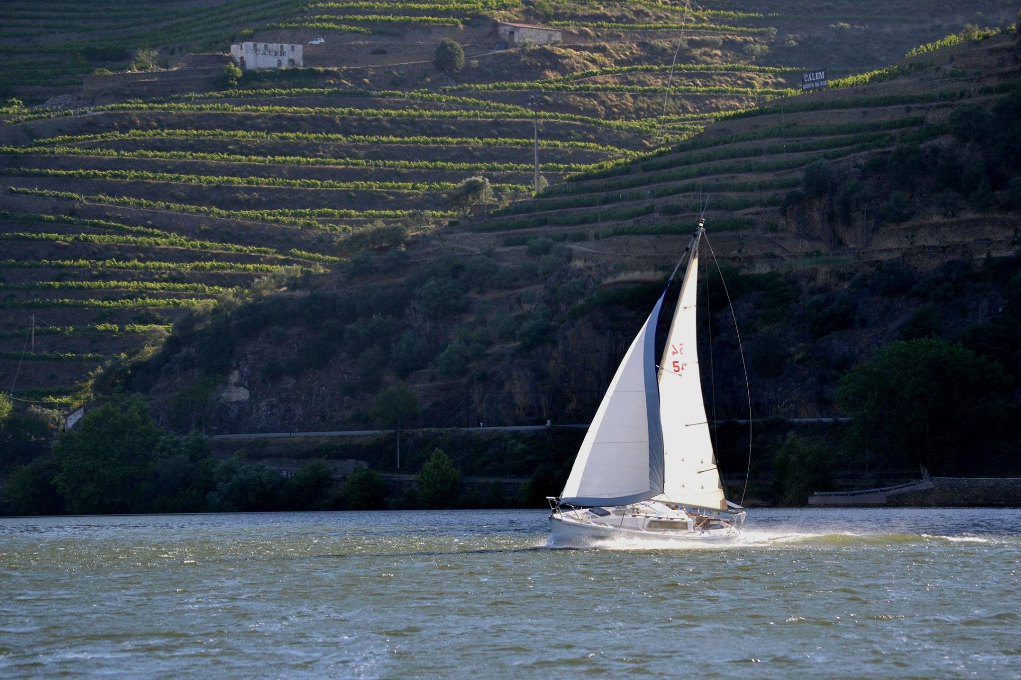 Wine & Sail