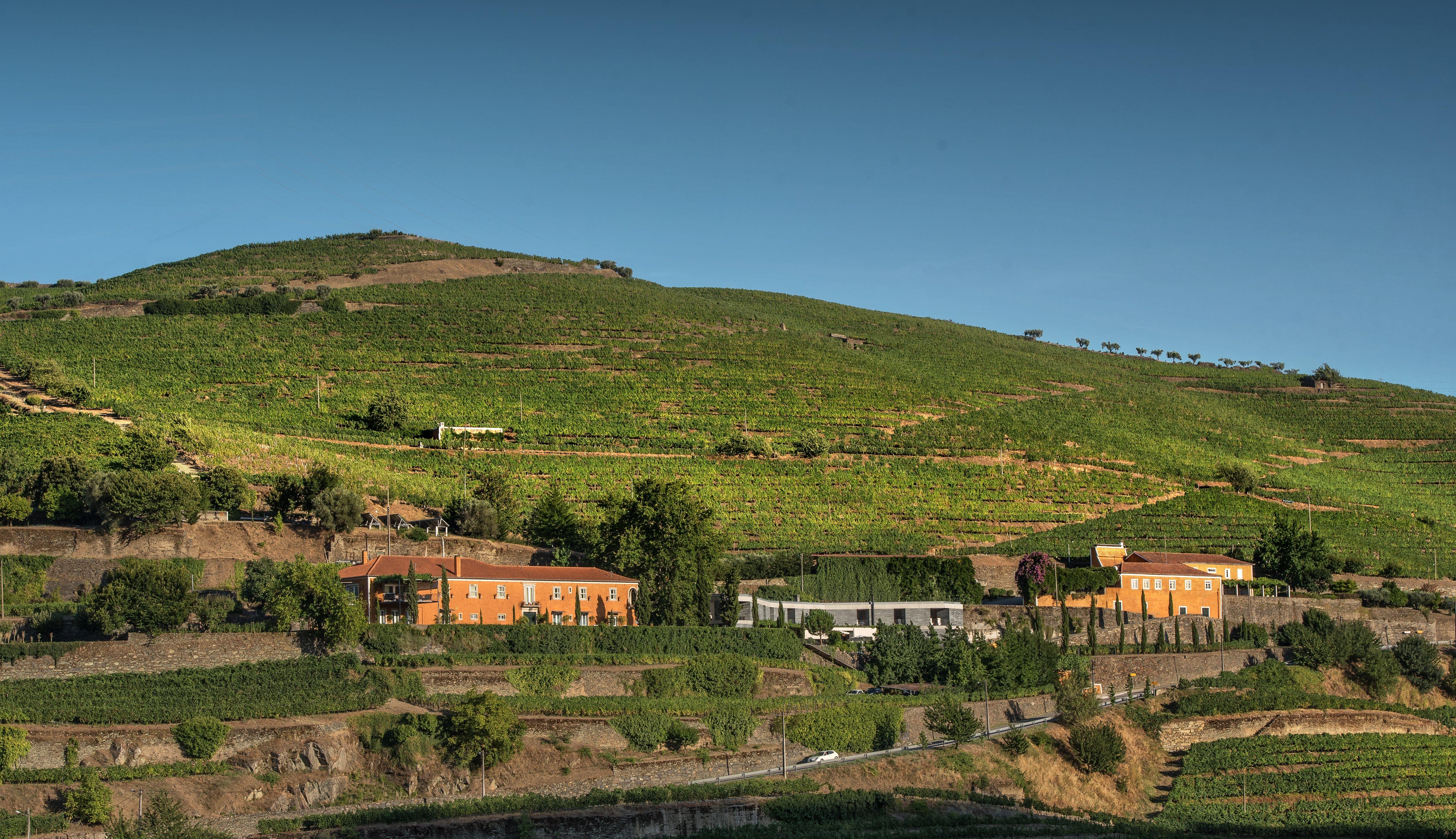 Quinta do Vallado - Wine Hotel Break