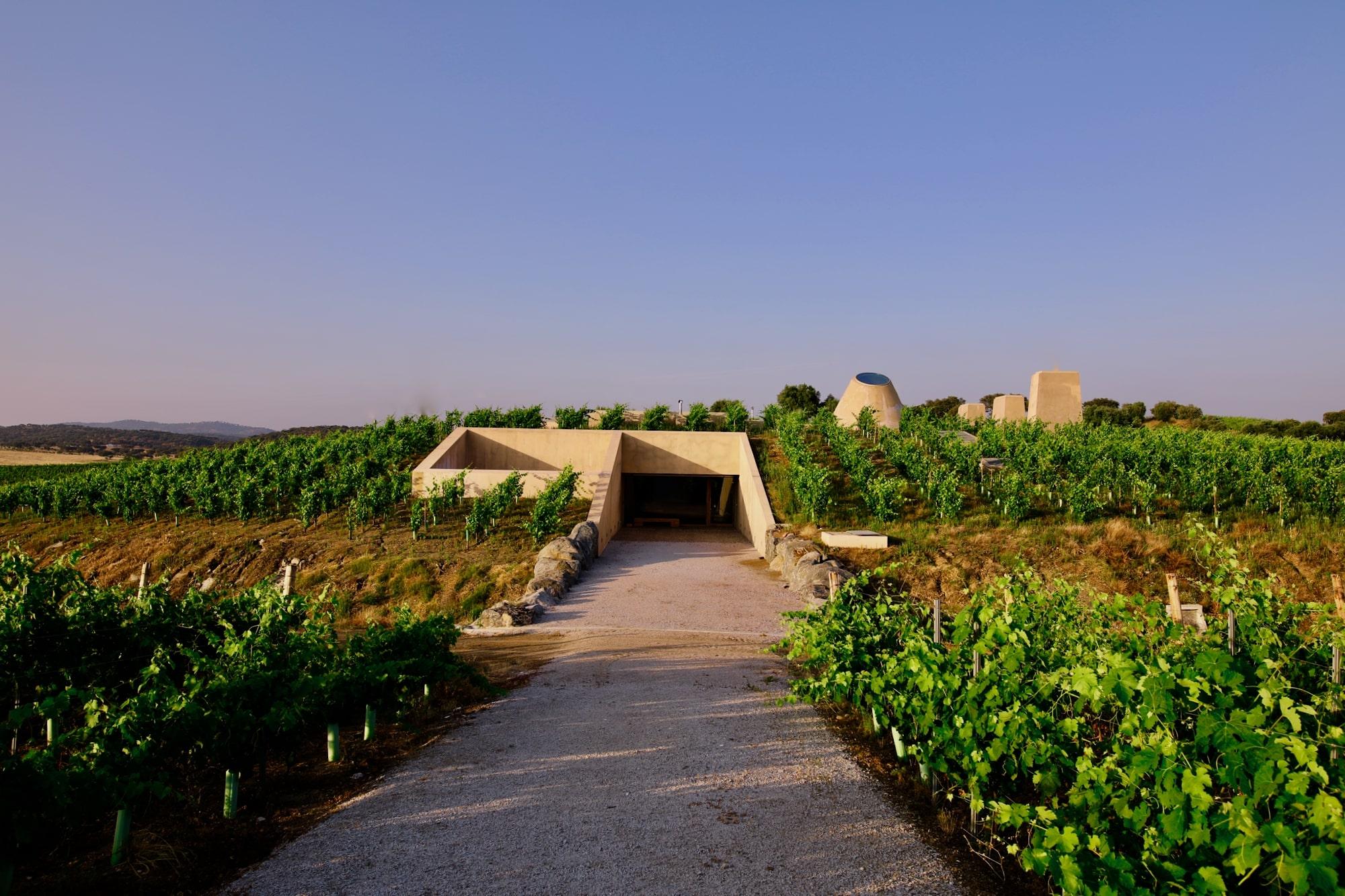 Herdade do Freixo – Visita & Prova 1 Vinho