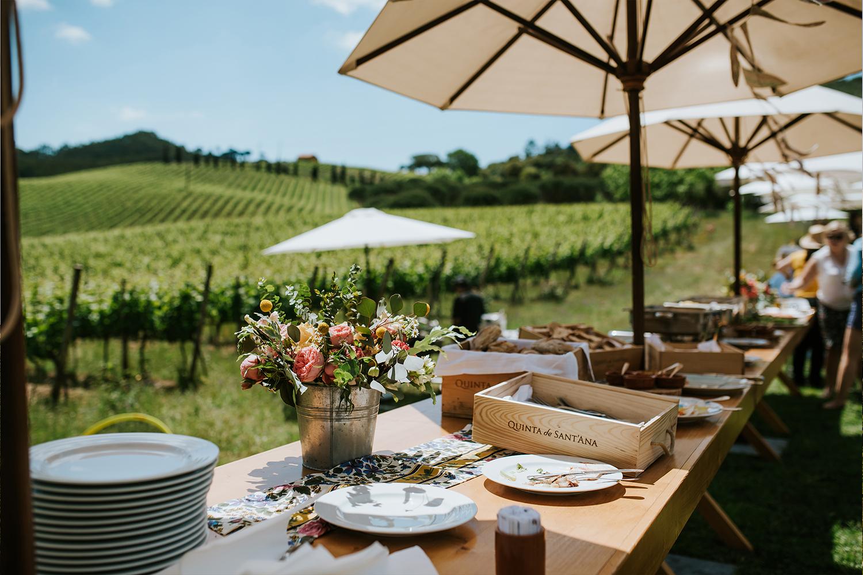 Quinta de Sant'Ana – Picnic en las Viñas