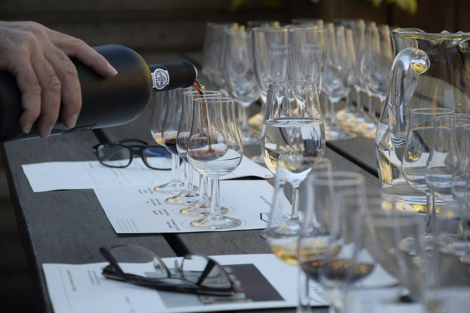 Beginner's Wine Tasting Course at Pinhão