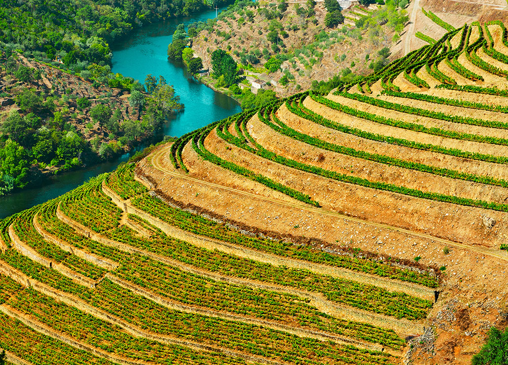 Portugal By Wine - Wine Tourism in Portugal