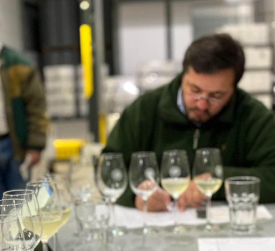 Quinta da Raza - Natural Wines Workshop