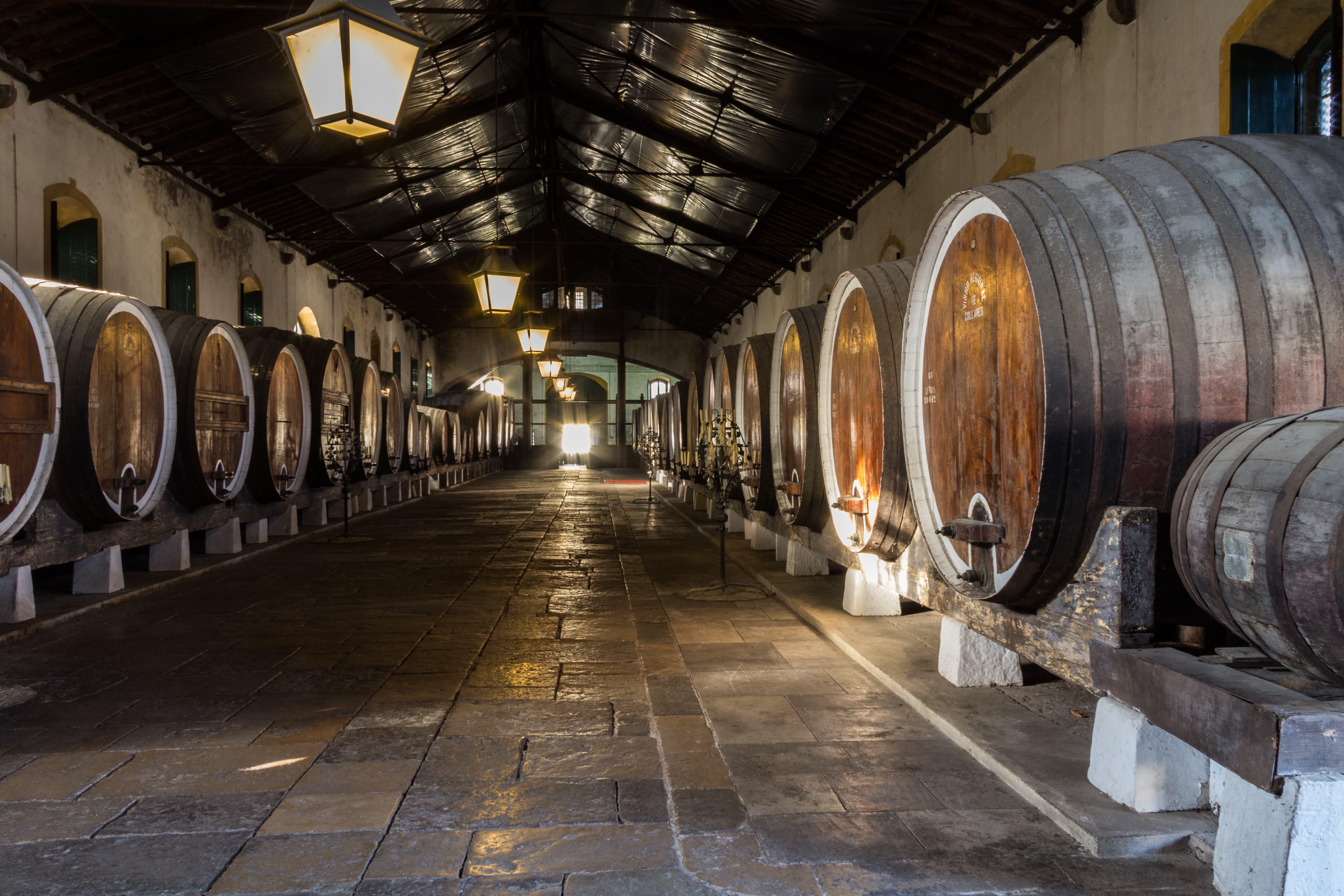 Romantic Sintra & Colares Wines