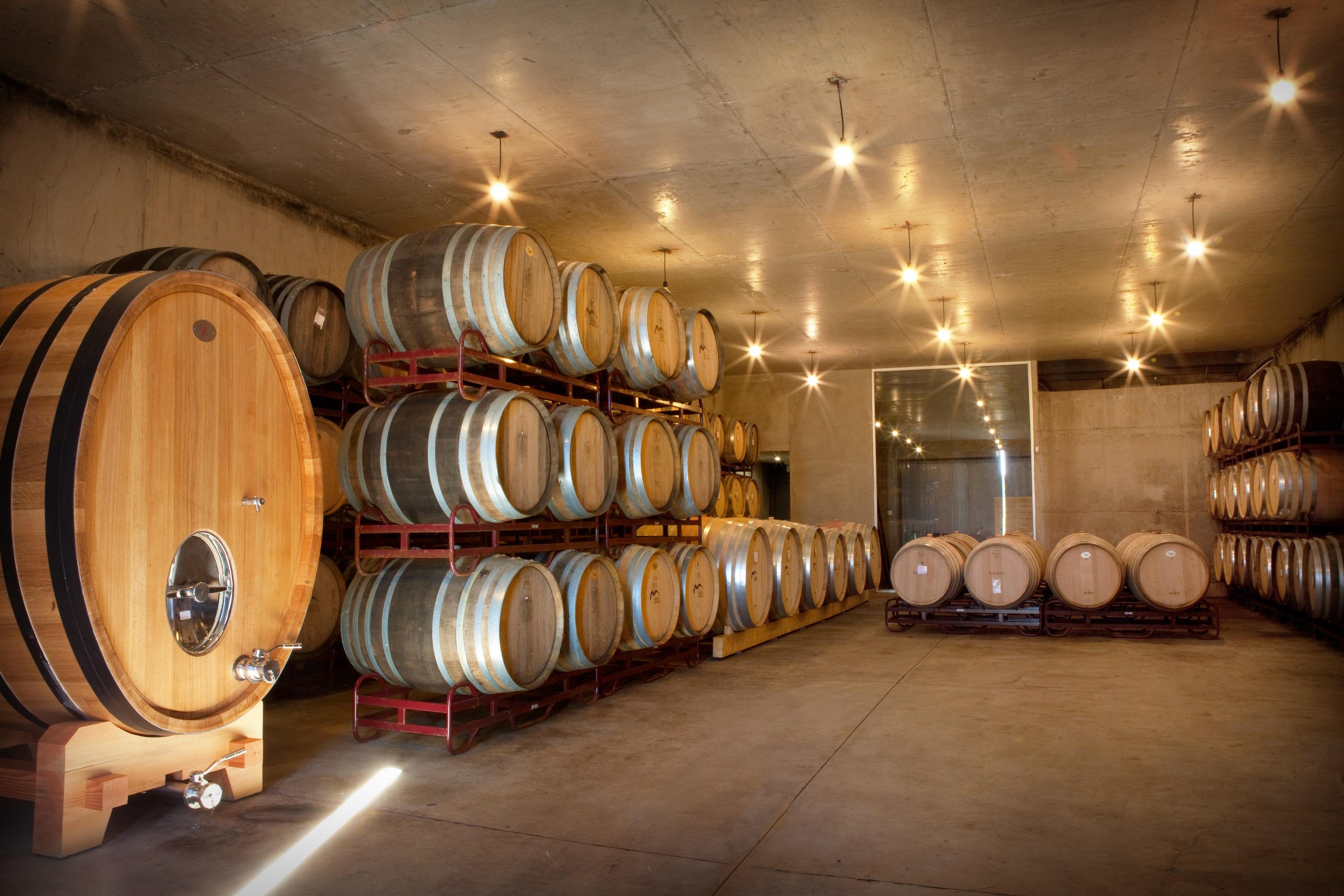 Adega Monte Branco - Prova de Vinhos Topo de Gama